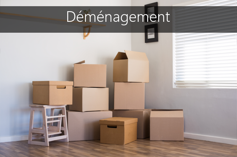 Demenagement